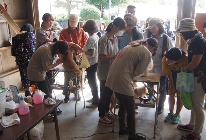 H29 9月24日 富山県動物愛護フェスティバル 2